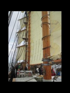 2010 - tall ship race 14