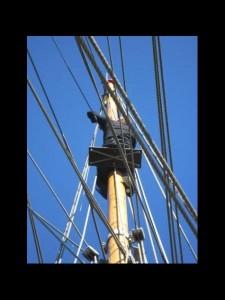 2010 - tall ship race 24